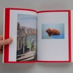 boek Encyclopedia. Charlotte Lybeer