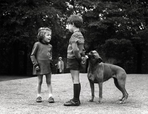Consumptieijs. Een jongetje houdt een ijsje voor zijn vriendinnetje achter zijn rug verborgen, waar stiekem een hond aan zijn ijsje staat te likken. Schotland. 22 november 1971.