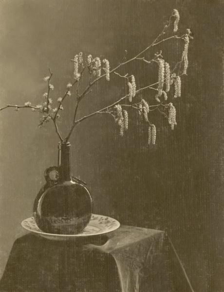 Bloemen. Stilleven van tak in platte fles op bord. [Katjes van de hazelaar?]