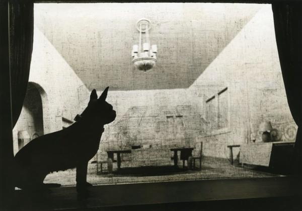 SFA022806013 | Silhouet van hond, met op de achtergrond een afbeelding die weergeeft hoe een hond ziet (gezichtsvermogen hond). [1940].