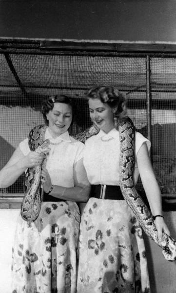 SFA004000959 Reizen: Zangduo ' De Rojo's' : twee Nederlandse jonge vrouwen die reizend ( vaak liftend) door meer dan 60 landen zingend en gitaar spelend optraden voor publiek. Robby van der Wal en Jos de Lange Wendels poseren hier met een python om hun nek. Edmonton, Canada, 1960.