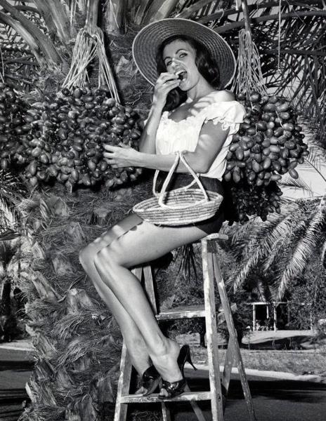 SFA003002630 Missverkiezing. Miss Dadel op een trapje voor een dadelpalm. Phoenix, Arizona, Verenigde Staten van Amerika, 17 oktober 1963.