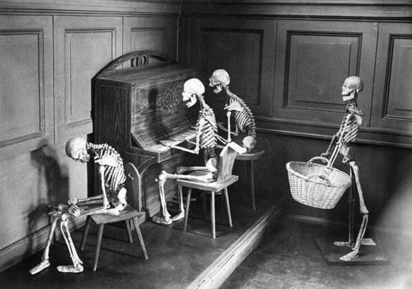 SFA002001218 | Voorlichting met skeletten op Hygienische tentoonstelling in Berlijn om ruggegraatskromming te voorkomen. 1927